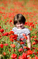 Down amongst the Poppies
